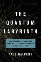 The Quantum Labyrinth - How Richard Feynman and John Wheeler Revolutionized Time and Reality ebook by Paul Halpern