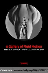 A Gallery of Fluid Motion ebook by Samimy, M.