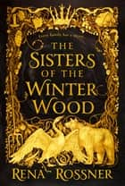 The Sisters of the Winter Wood 電子書 by Rena Rossner
