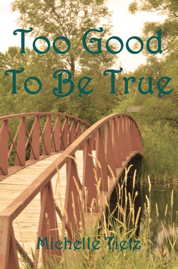 Too Good To Be True ebook by Michelle Tietz