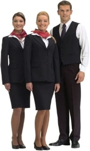 How to Become a Flight Attendant ebook by Stephen Meyers