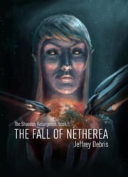 The fall of netherea ebook by Jeffrey Debris