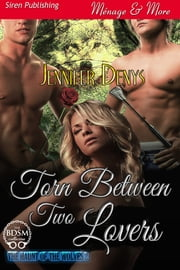 Torn Between Two Lovers ebook by Jennifer Denys
