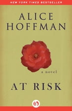 At Risk, A Novel