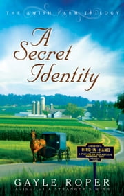 A Secret Identity ebook by Gayle Roper