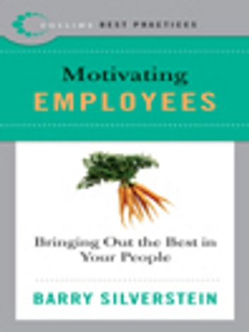 Best Practices: Motivating Employees - Bringing Out the Best in Your People ebook by Barry Silverstein