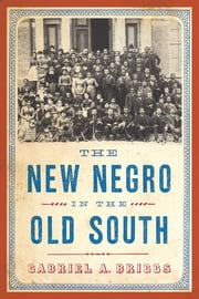 The New Negro in the Old South ebook by Gabriel A. Briggs
