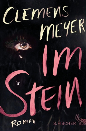 Im Stein - Roman ebook by Clemens Meyer