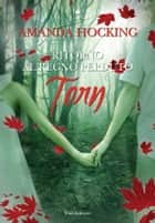 Torn ebook by Amanda Hocking