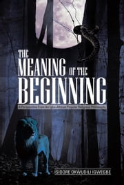 THE MEANING OF THE BEGINNING - A Perspective from an Igbo-African Popular Religious Philosophy ebook by ISIDORE OKWUDILI IGWEGBE
