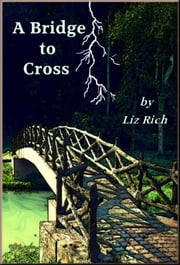 A Bridge To Cross ebook by Liz Rich