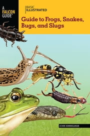 Basic Illustrated Guide to Frogs, Snakes, Bugs, and Slugs ebook by John Himmelman