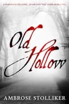 Old Hollow ebook by Ambrose Stolliker