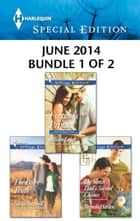 Harlequin Special Edition June 2014 - Bundle 1 of 2 - Fortune's Prince\The Single Dad's Second Chance\The Baby Truth ebook by Allison Leigh, Brenda Harlen, Stella Bagwell