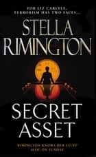 Secret Asset - (Liz Carlyle 2) ebook by Stella Rimington