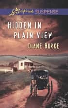 Hidden in Plain View (Mills & Boon Love Inspired Suspense) ebook by Diane Burke