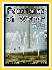 Just Water Fountain Photos! Big Book of Photographs & Pictures of Water Fountains, Vol. 1 ebook by Big Book of Photos