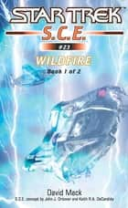 Wildfire Book 1 ebook by David Mack