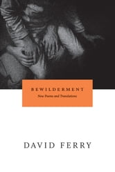 Bewilderment - New Poems and Translations ebook by David Ferry
