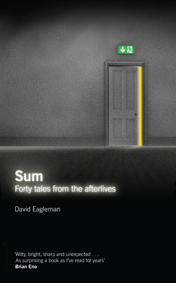 Sum - Tales from the Afterlives ebook by David Eagleman
