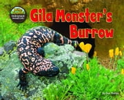 Gila Monster's Burrow ebook by Phillips, Dee