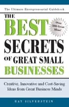 The Best Secrets of Great Small Businesses - Creative, Innovative and Cost-Saving Ideas from Great Business Minds ebook by Ray Silverstein