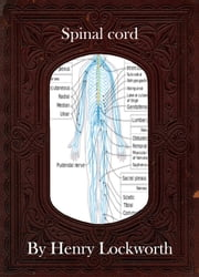 Spinal cord ebook by Henry Lockworth,Eliza Chairwood,Bradley Smith