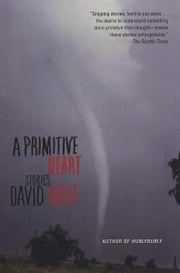 A Primitive Heart - Stories ebook by David Rabe