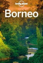 Lonely Planet Borneo ebook by Lonely Planet,Daniel Robinson,Adam Karlin,Paul Stiles