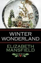 Winter Wonderland ebook by Elizabeth Mansfield