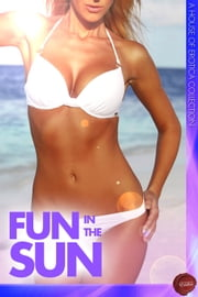 Fun in the Sun - A House of Erotica Collection ebook by H.L. Lola