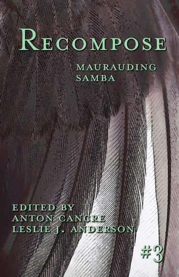 Maurauding Samba ebook by
