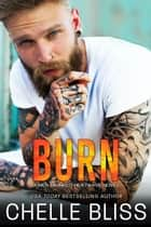 Burn ebooks by Chelle Bliss