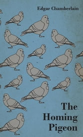 The Homing Pigeon ebook by Edgar Chamberlain