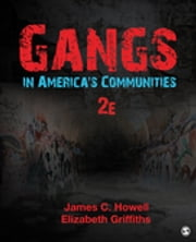 Gangs in America's Communities ebook by James C. Howell,Elizabeth A. Griffiths