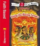 Facing the Blazing Furnace - Level 2 ebook by David Miles, Zondervan