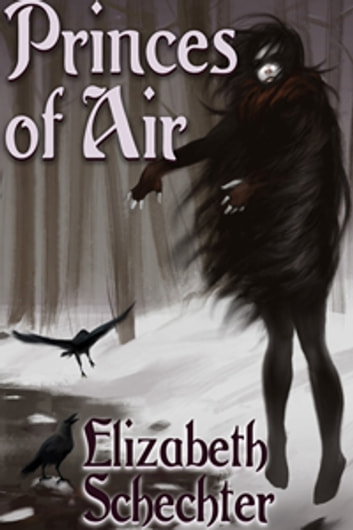 Princes of Air ebook by Elizabeth Schechter