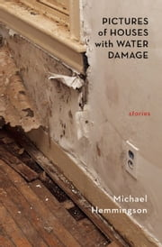 Pictures of Houses with Water Damage ebook by Michael Hemmingson