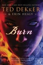 Burn ebook by Ted Dekker