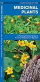 Medicinal Plants - A Folding Pocket Guide to Familiar Widespread Species ebook by James Kavanagh,Raymond Leung,Waterford Press