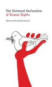 The Universal Declaration of Human Rights ebook by Michel Streich