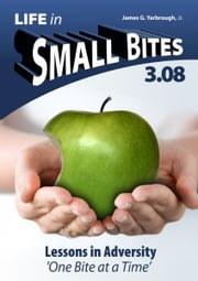 Life in Small Bites: 3.08 Adversity ebook by James Yarbrough Jr