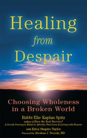 Healing from Despair - Choosing Wholeness in a Broken World ebook by Rabbi Elie Kaplan Spitz,Erica Shapiro Taylor,Rabbi Abraham J. Twerski, MD