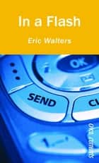 In a Flash ebook by Eric Walters