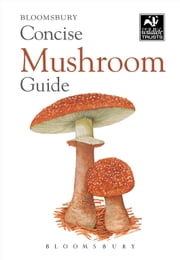 Concise Mushroom Guide ebook by Bloomsbury Publishing