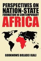 Perspectives on Nation-State Formation in Contemporary Africa ebook by Godknows Boladei Igali