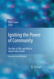 Igniting the Power of Community - The Role of CBOs and NGOs in Global Public Health ebook by Paul A. Gaist
