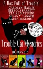 A Box Full of Trouble - Trouble Cat Mysteries ebook by Carolyn Haines, Rebecca Barrett, Claire Matturro,...