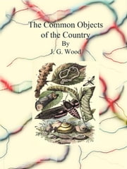 The Common Objects of the Country ebook by J. G. Wood