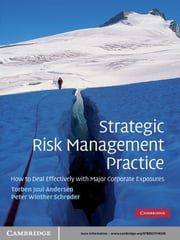 Strategic Risk Management Practice - How to Deal Effectively with Major Corporate Exposures ebook by Torben Juul Andersen,Peter Winther Schrøder